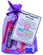 Assistant Headteacher Survival Kit Gift  - Great present for Christmas, end of year or just because.