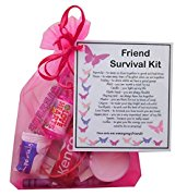 Friend Survival Kit Gift  - Friend Gift, Ideal birthday gift for Friend, excellent Friendship gift, friend present, present for friend, Friend Gifts for Friend