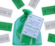 Good Luck Quotes of A Gift of Motivation, Inspiration, and  Positivity to wish you Good Luck for any occasion