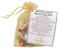 Promotion Survival Kit Gift  - Great novelty gift or alternative to a card