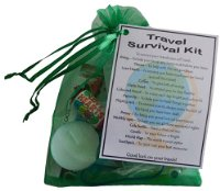 Travel Survival Kit  - Great novelty gift!