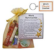 'Worlds OKayist Employee' Keyring and Work Survival Kit Gift Set for Secret Santa, Work Secret Santa Gifts, Work Gifts -